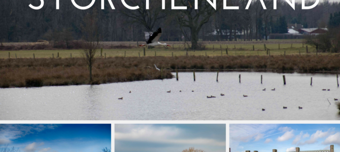 Ausflugstipp Storchenland – Die Frühlingsboten der Lüfte sind da