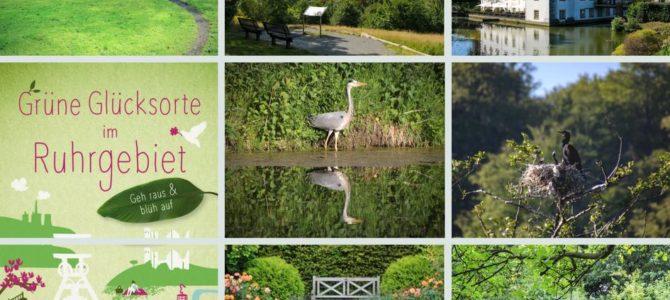 Ausflugstipps in Essen – Grüne Glücksorte im Ruhrgebiet
