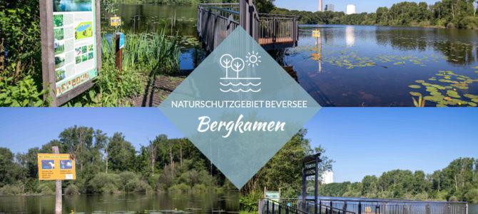Ruhrgebiet – Eine neue Aussichtsplattform am Beversee in Bergkamen