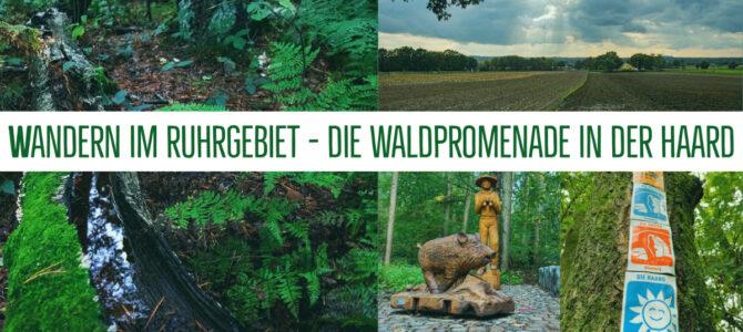 Wandern im Ruhrgebiet – Haard an der Grenze
