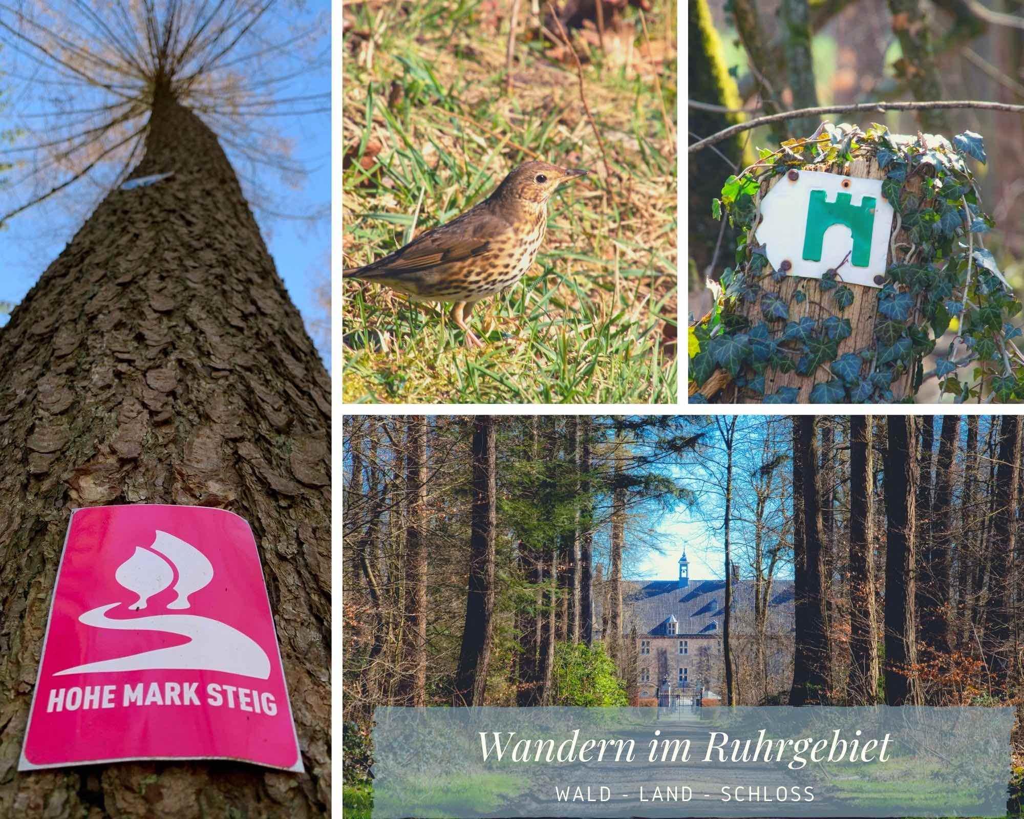 Wandern im Ruhrgebiet –  Unterwegs im Naturpark Hohe Mark mit Blick auf Schloss Lembeck
