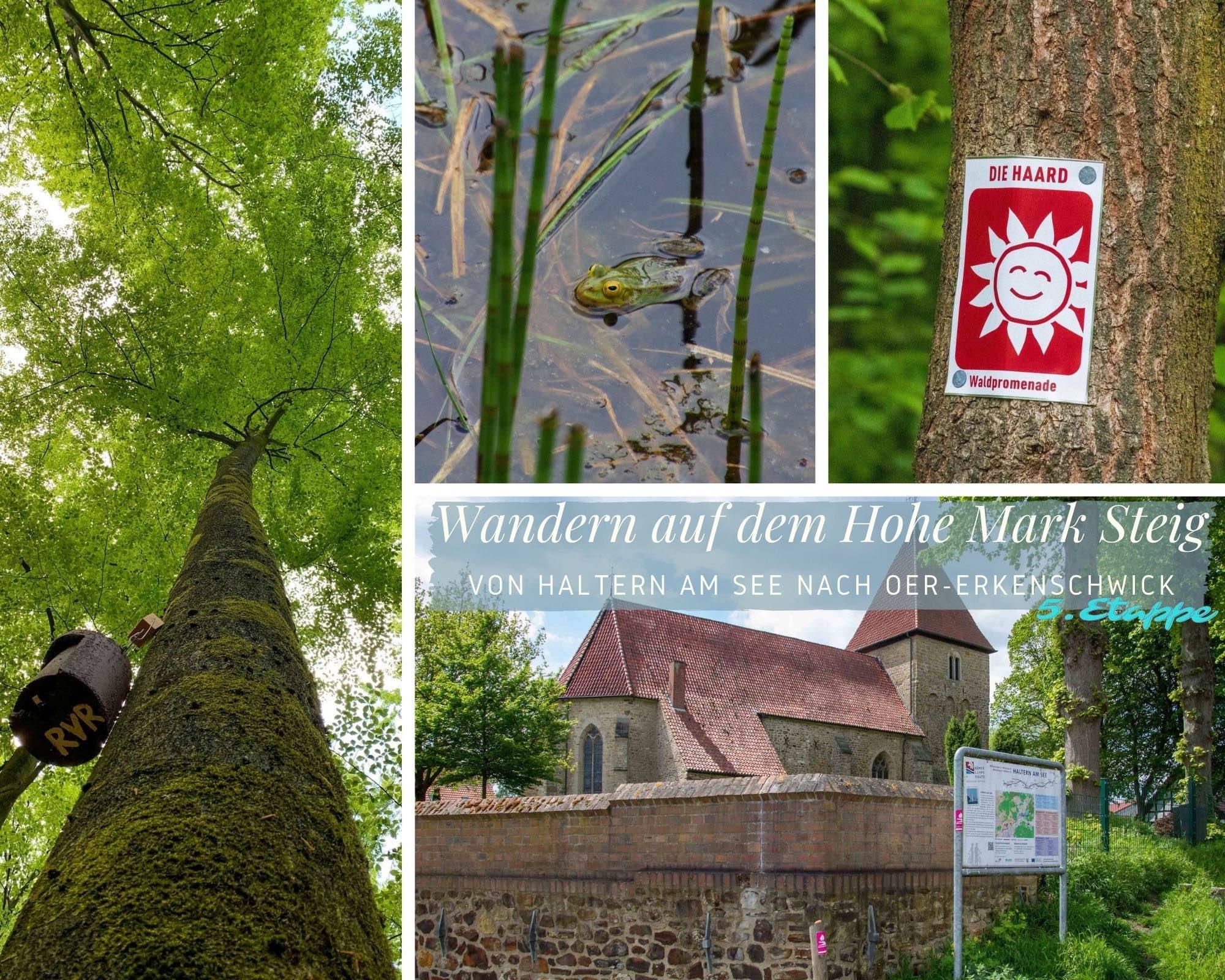 Wandern auf dem Hohe Mark Steig – 5.Etappe – Von Haltern am See bis Oer-Erkenschwick