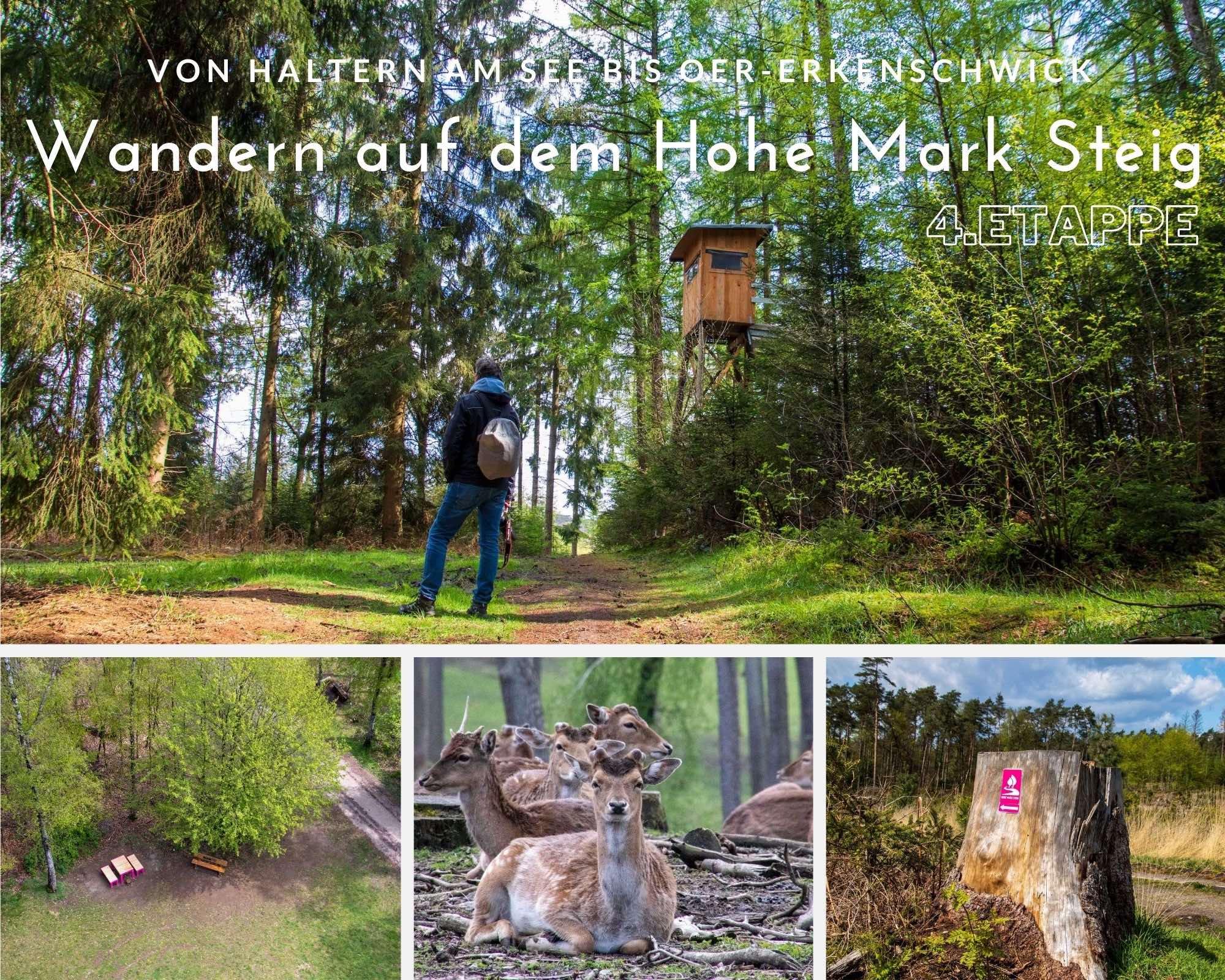 Wandern auf dem Hohe Mark Steig – 4.Etappe – Von Lembeck nach Haltern am See